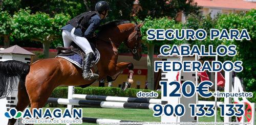 banner web FVH Seguros Caballos Anagan